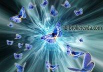 Психология трейдинга или бабочки в твоей голове.