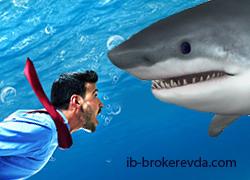 Акулы рынка